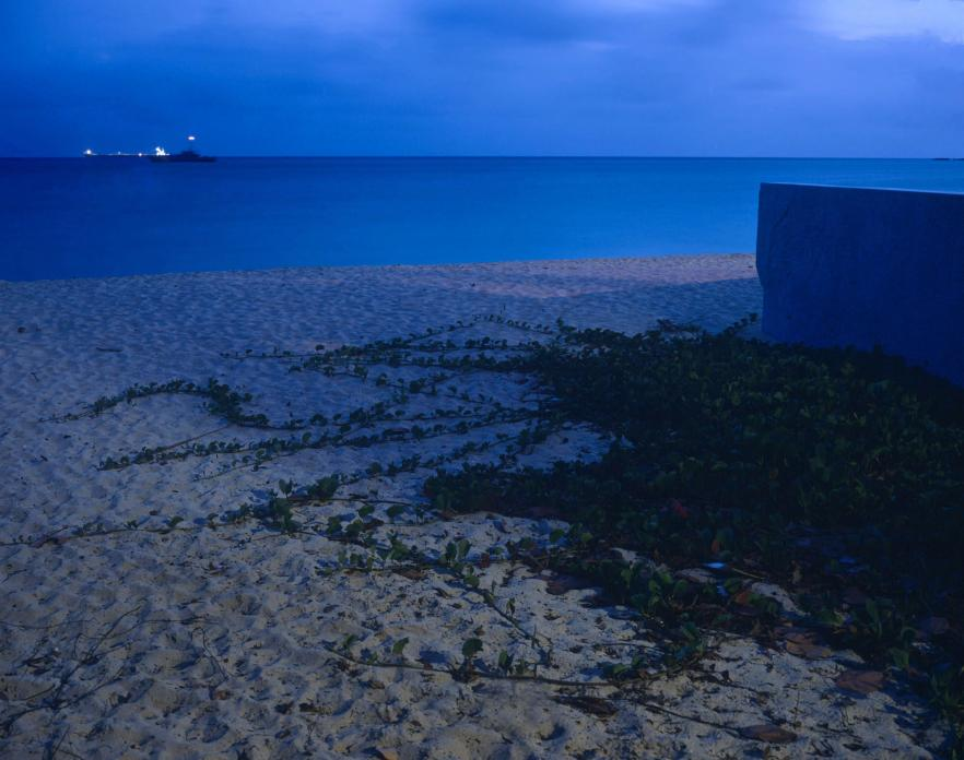 Untitled #18, St. Maarten, 2012